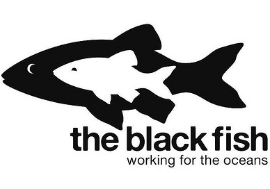 the_black_fish_logo-_low_resolution-_march_2013.jpg